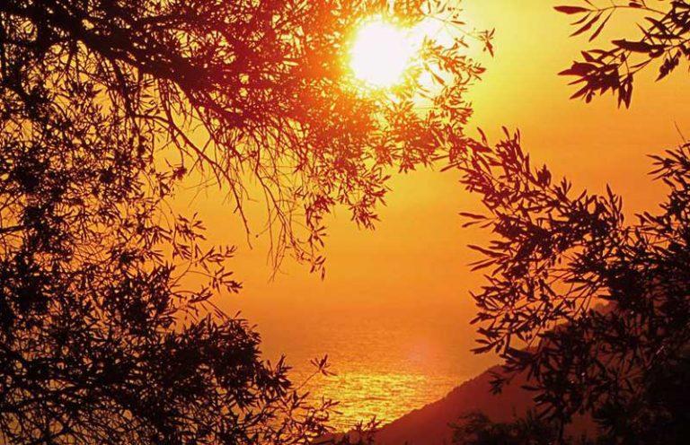 Temperatura en Cali oscila entre 32°C y 34°C, ¿Qué pasa con los rayos ultravioleta?