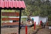 Guaduas decomisadas en Valle se entregaron a proyecto en institución educativa