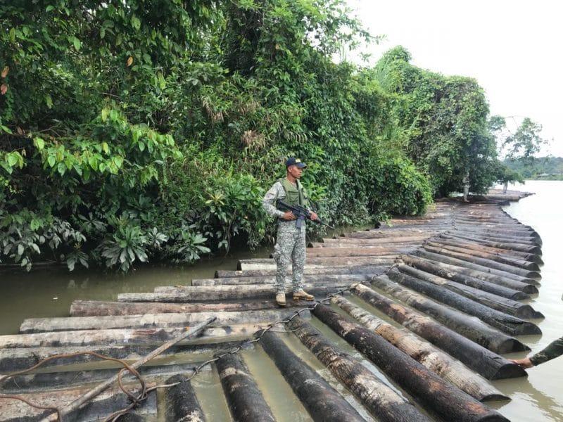 Incautan 2.038 piezas de madera transportadas ilegalmente en el Pacífico