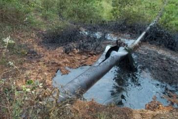Derrame de crudo en Tumaco por atentado al oleoducto transandino