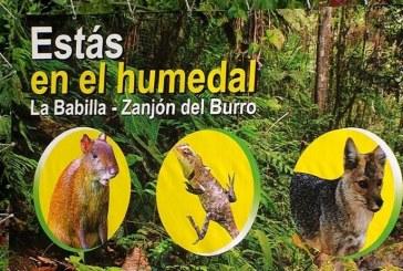 Ordenan no intervenir Zanjón del Burro hasta que demuestren impacto ambiental