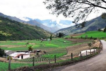 Agro vallecaucano espera romper barrera de 100 millones de dólares en exportaciones