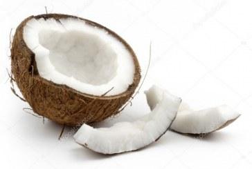 Valle del Cauca sería líder en producción de coco en la región del Pacífico colombiano