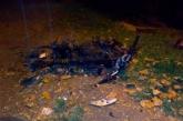 De forma simultánea, dos atentados terrorista se presentaron en el Cauca