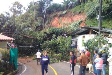 Por derrumbes en el corregimiento de Felidia, vías y casas se vieron afectadas