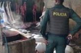 Fue allanado un matadero clandestino de cerdos en el jarillón del río Cauca