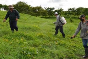 Realizan pedagogía con agricultores del Valle para el buen uso de plaguicidas