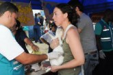 Entregarán 500 cupos para la esterilización de caninos y felinos en Cali
