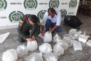 Decomisan en el Valle 400 peces exóticos que serían comercializados en Quindío