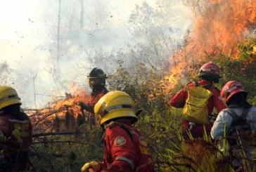 Alerta por incremento de incendios forestales en ladera de Cali por temporada seca