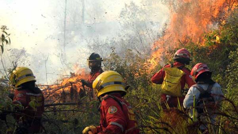 Incendios forestales en Cali serían causados por la quema de basuras