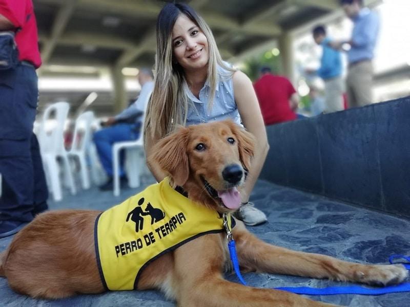 Perros guía y asistenciales se integran al sistema de transporte Mío en Cali