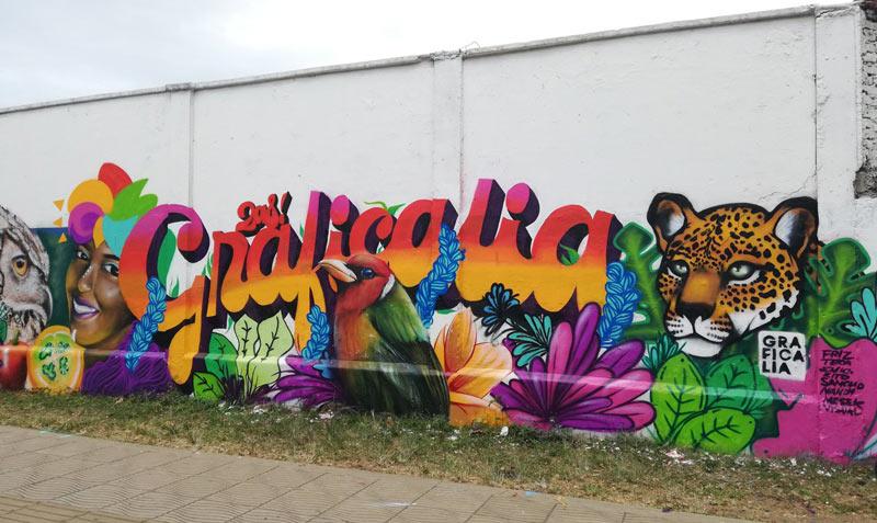 Barrio Petecuy II se convirtió en lienzo abierto para concursantes de Graficalia