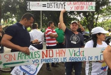 Protestan contra tala de árboles por obras de la Terminal Simón Bolívar del Mío