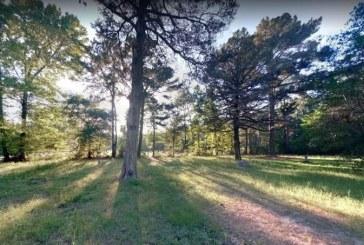 Imágenes captadas por Google Maps en cementerio causan terror en redes