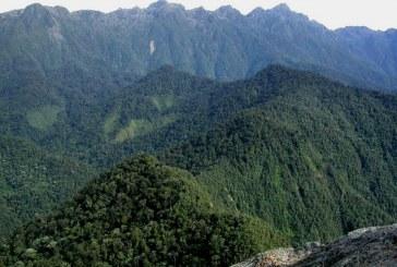 Parques Nacionales rechaza supuestas amenazas de campesinos en Farallones de Cali