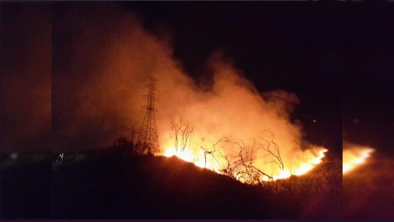 Nuevo incendio en el sector Altos de Menga afectó dos hectáreas de bosque