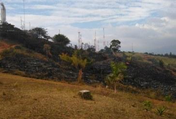 Tras incendio forestal en Cristo Rey, avanza su recuperación con plan Ave Fénix