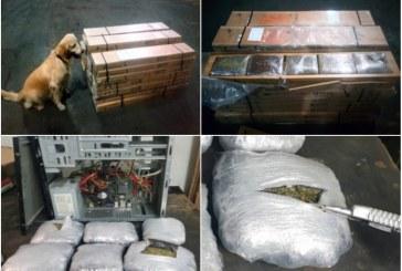 Autoridades incautan dos cargas de marihuana en centro de acopio de Yumbo