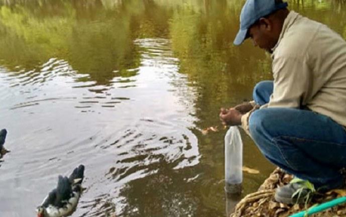 Preocupación en Cauca por mortandad de peces en río Timbiquí