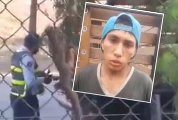 Video: hombre que habría sobornado a guarda de tránsito de Cali desmiente los hechos