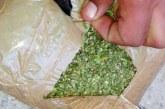 Congreso vuelve a rechazar proyecto para legalizar uso recreativo de marihuana