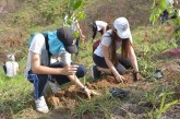 Jornada de protección del agua logró la siembra de 400 árboles en zonas rurales de Cali