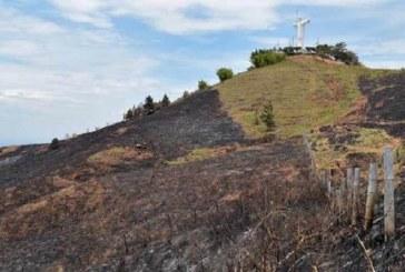 Así avanza restauración del cerro Los Cristales-Cristo Rey tras grave incendio