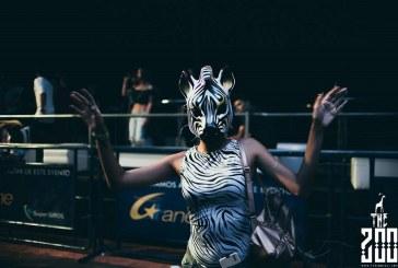 Regresa a Cali 'The Zoo', el festival de música electrónica con sentido social