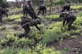 Duque dice que se erradicarán 130.000 hectáreas de cultivos ilícitos este año