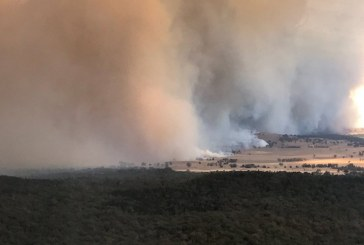 Evacuan a 8.000 personas por incendios forestales en Queensland, Australia