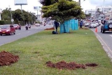 Noticias falsas a un día del inicio de la instalación de graderías para Calle de la Feria