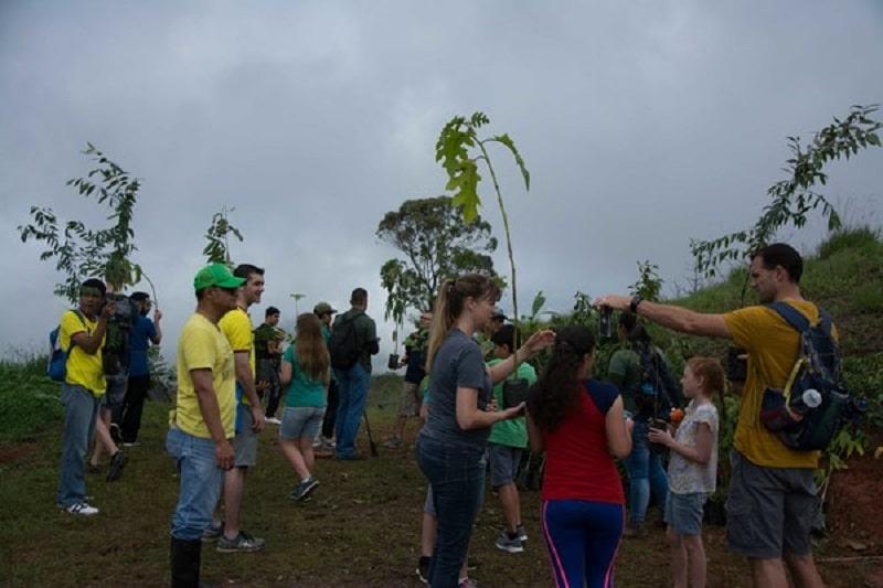 Más de 300 árboles sembrados en nueva jornada de recuperación de Cristo Rey