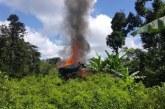 Brigada de EEUU llegará en junio a Colombia para lucha contra narcotráfico