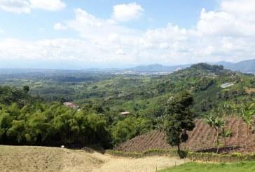 Con llegada de aerolínea española, buscan aumentar turismo en Valle, Risaralda y Quindío