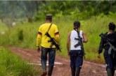Tres personas habrían sido asesinadas por disidencias de Farc por incumplir la cuarentena