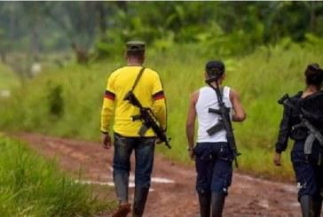 En video: nuevos enfrentamientos entre grupos armados en Corinto, Cauca