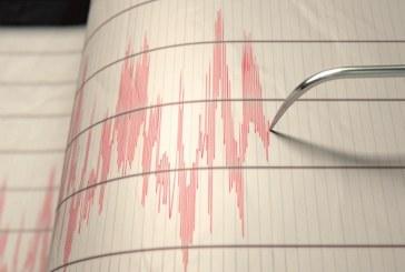 En la madrugada tembló en Caquetá, pero el sismo también se sintió en Cali