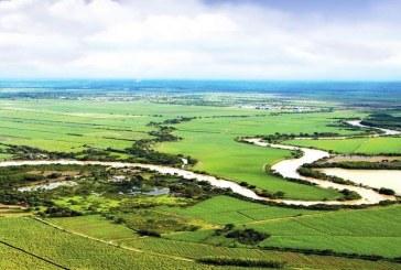 Personero de Cali advierte alerta por estado del agua en el río Cauca