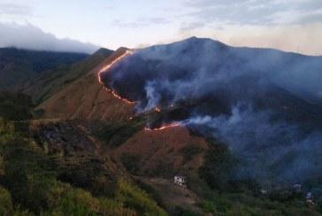 Un total de 117 incendios forestales se han atendido en Cali durante el 2019