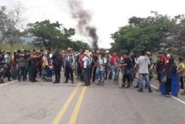 Tras fallo de tutela, Gobierno espera desbloqueo de la vía Panamericana