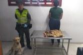 El hallazgo que hizo 'Sofi', uno de los perros policía del Aeropuerto Alfonso Bonilla
