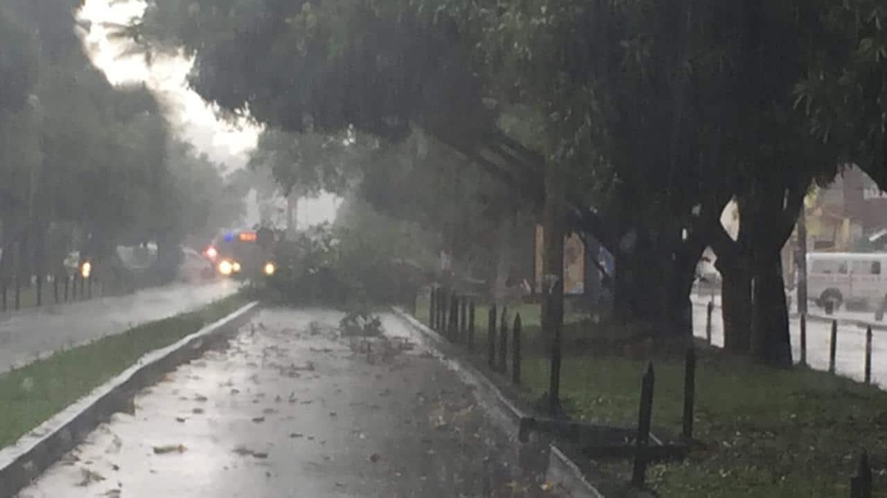 Fuerte aguacero deja motociclista herido, árboles caídos y vías inundadas en Cali