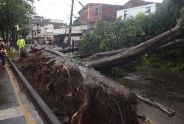 Más de 55 emergencias atendieron los Bomberos de Cali por fuertes lluvias