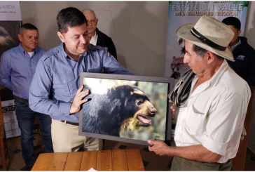 Con acuerdos buscan proteger al oso Andino que habita en corregimiento El Queremal