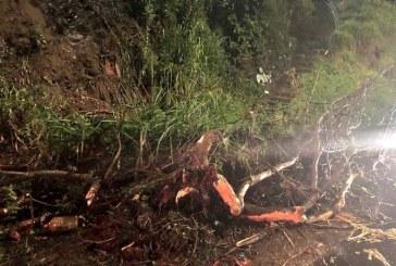Bacheton pone en pausa su operación para atender emergencias por lluvias