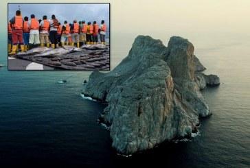 Caen embarcaciones ecuatorianas que realizaban pesca ilegal en santuario Malpelo