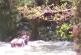 Dos adultos mayores fueron rescatados por scouts y policías tras caer al río Pance