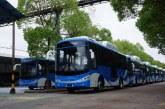 Anuncian para julio la llegada de la primera flota de buses a gas para el Mío