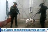 Menor de edad gravemente herida tras ataque de perro en Comuna 21 de Cali